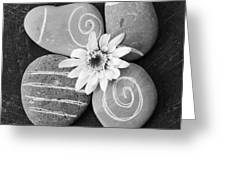 Harmony And Peace Greeting Card