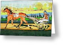 Harness Racer Greeting Card