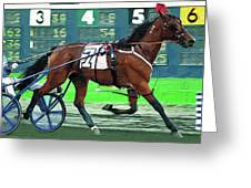 Harness Racer Racing By Greeting Card