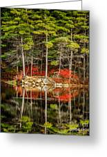 Harold Parker State Park In The Fall Greeting Card