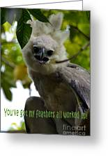 Harper Eagle Greeting Card