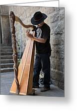 Harpist Street Musician, Barcelona, Spain Greeting Card
