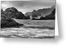Harris Beach Oregon Monochrome Greeting Card