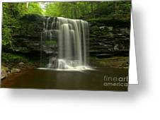 Harrison Wrights Forest Falls Greeting Card
