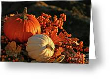 Harvest Colors Greeting Card by Sandra Cunningham