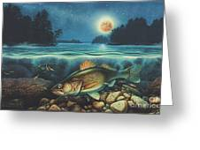 Harvest Moon Walleye 3 Extended Version Greeting Card