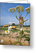 Harvest Mouse And Backhoe Greeting Card