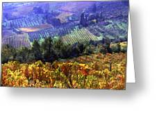 Harvest Time At The Vineyard Greeting Card by Elaine Plesser