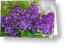 Harvesting Aroma Greeting Card