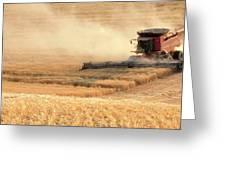 Harvesting Wheat 1336 Greeting Card