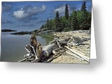 Hattie's Bay In Pukaskwa National Park Ontario Greeting Card