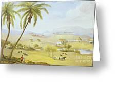 Haughton Court - Hanover Jamaica Greeting Card