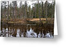 Haukkajoki 1 Greeting Card