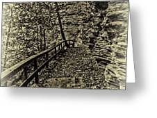 Havana Pathway In Sepia Greeting Card by William Norton