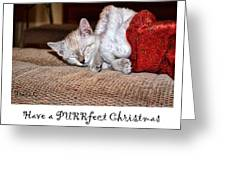 Have A Purrfect Christmas Greeting Card
