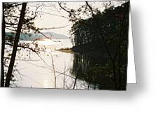 Haven Of Trees Greeting Card