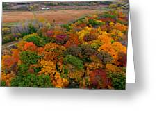 Havenwoods State Forest Greeting Card