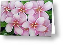 Hawaii An Tropical Plumeria Flower #338 Greeting Card