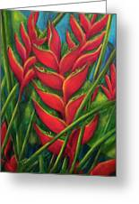 Hawaii Heliconia Flowers #445 Greeting Card