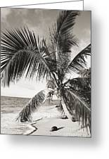 Hawaii Ocean Palm Greeting Card