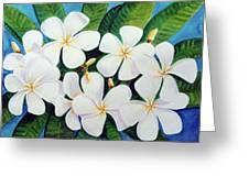 Hawaii Tropical Plumeria Flower  # 220 Greeting Card