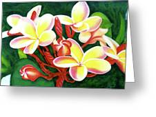 Hawaii Tropical Plumeria Flower #205 Greeting Card