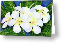 Hawaii Tropical Plumeria Flower  #208 Greeting Card
