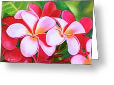 Hawaii Tropical Plumeria Flower #212 Greeting Card