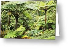 Hawaii Tropical Rainfores Greeting Card