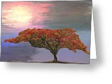 Hawaiian Flame Tree Greeting Card