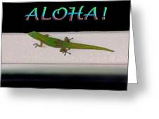 Hawaiian Gecko Greeting Card