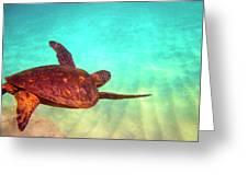 Hawaiian Green Sea Turtle Greeting Card by Bette Phelan