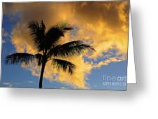 Hawaiian Sunset Hanalei Bay 5  Greeting Card