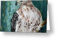 Hawk Greeting Card by Maria Langgle