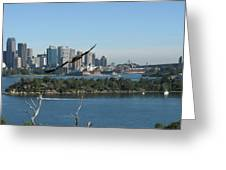 Hawk Over Sydney Harbour Greeting Card