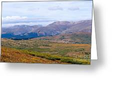 Hawk Soaring Over Guanella Pass In The Arapahoe National Forest Greeting Card