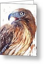 Hawk Watercolor Greeting Card