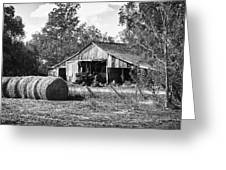 Hay And The Old Barn - Bw Greeting Card