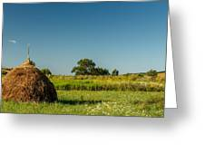 Hay Bale On A Rural Field Greeting Card