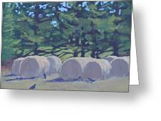 Hay Bales And Crows Greeting Card