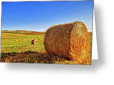 Hay Bales Greeting Card by Dominic Piperata