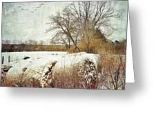 Hay Bales In Snow Greeting Card