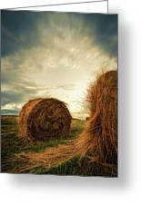 Hay Bales On Farm Field Greeting Card