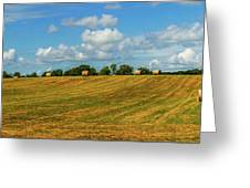 Hay Bales Panoramic Greeting Card by Barry Jones