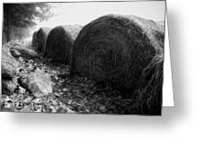 Hay Bales Paxton Ma Greeting Card