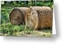 Hay Bay Rolls 3 Greeting Card