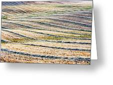 Hay Billows II Greeting Card
