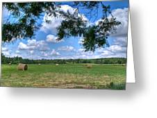 Hay Field In Summertime Greeting Card