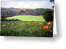 Hay Field Greeting Card