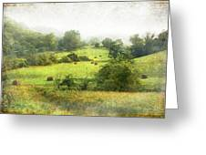 Hay Fields Greeting Card